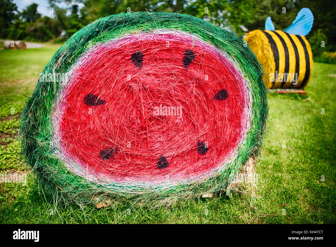 Close Up View of a Hay Bale Painted as a Cut Watermelon, Schaefer Farms, Flemington, New Jersey, USA - Stock Image
