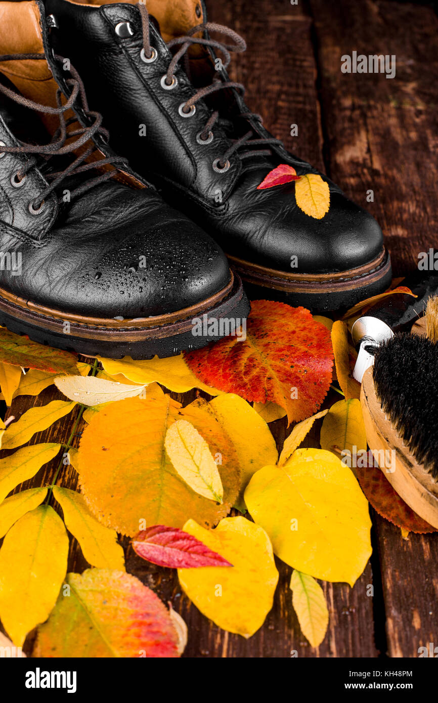Waterproof  Black boots on wooden background with autumn leaves polishing equipment, brush and polish cream Stock Photo