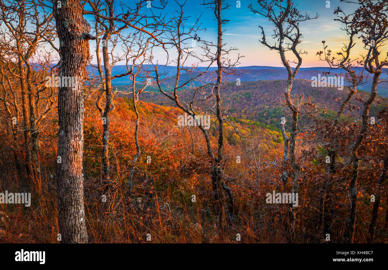 The Talimena Scenic Drive is a National Scenic Byway in southeastern Oklahoma and extreme western Arkansas. - Stock Image