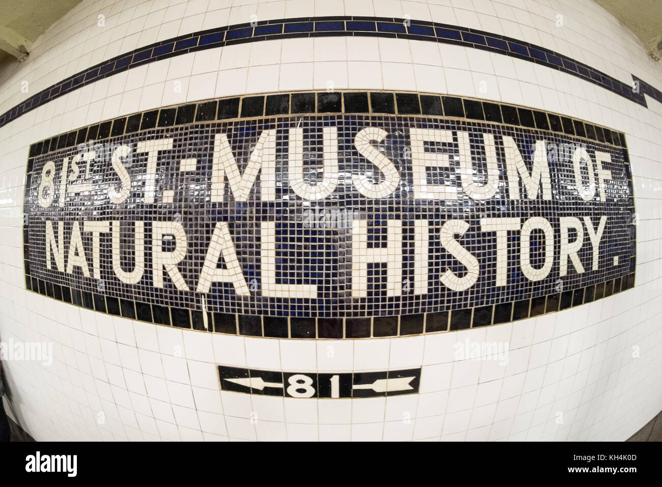 Mosaic sign for the Museum of American Natural History, Central Park West, manhattan, New York City, United states - Stock Image