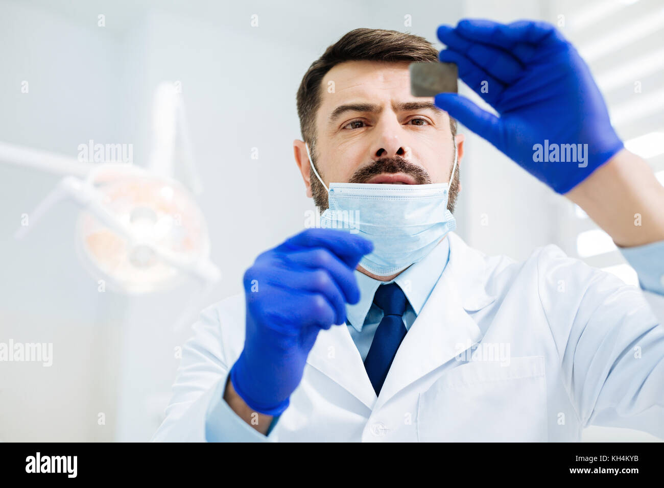 Attentive dentist looking at the Xray image - Stock Image