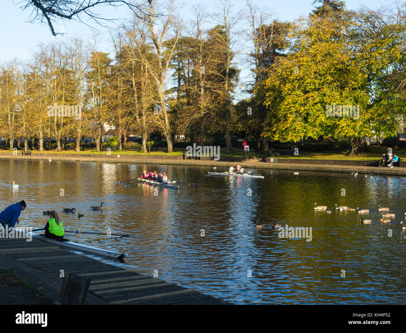 Rowers on River Avon Evesham Worcestershire England UK on a lovely calm November day - Stock Image