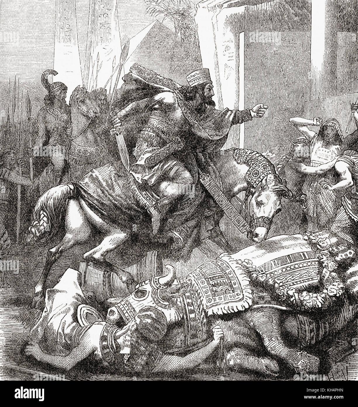 Cambyses II killing the sacred bull Apis or Hapis.  Egyptian mythology states that for killing the sacred animal - Stock Image