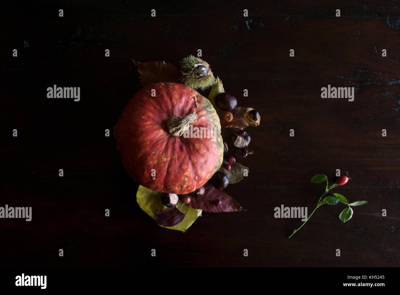 beautiful autumnal still life with leaves, chestnuts and orange pumpkin, on rustic dark wooden background - Stock Image