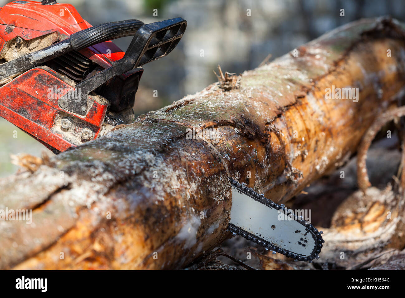 chainsaw - Stock Image