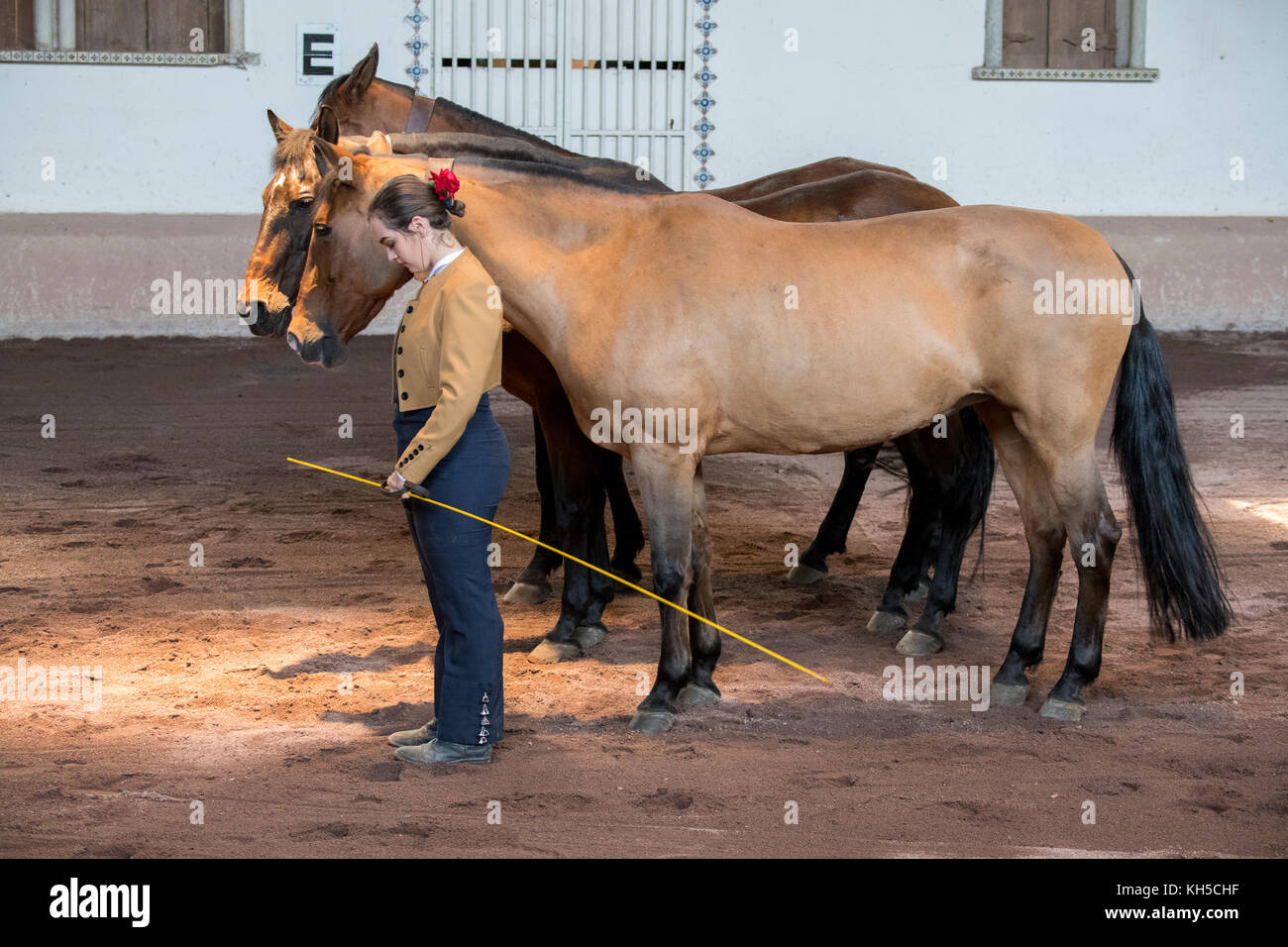 Central America, Costa Rica, Alajuela Province, Rancho San Miguel. Traditional Andalusian horse show, woman in typical - Stock Image
