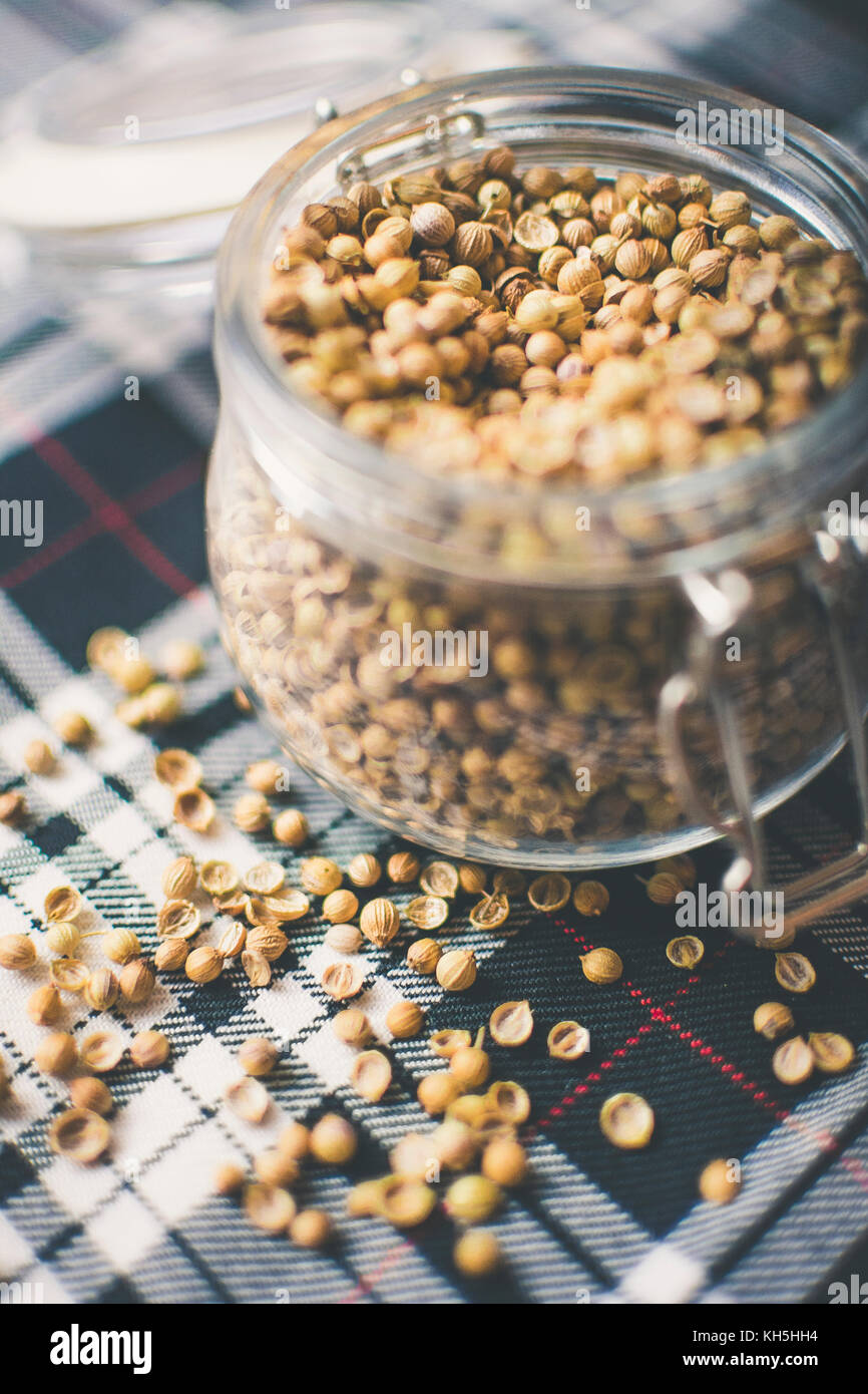 Gin and Whisky Ingredients: Coriander Seeds in glass jar on blue and white tartan - Stock Image