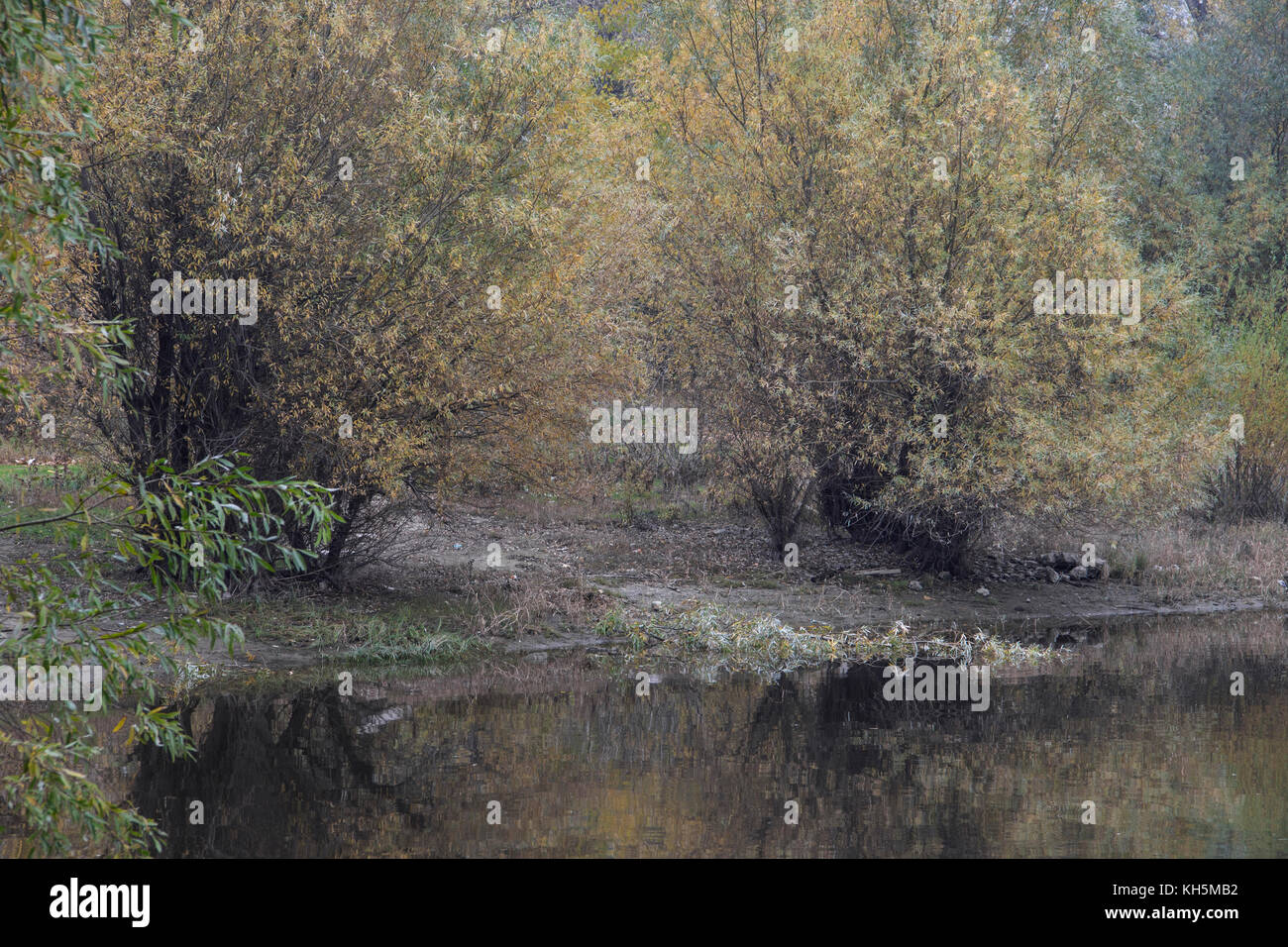 autumn landscape by the armband - Stock Image
