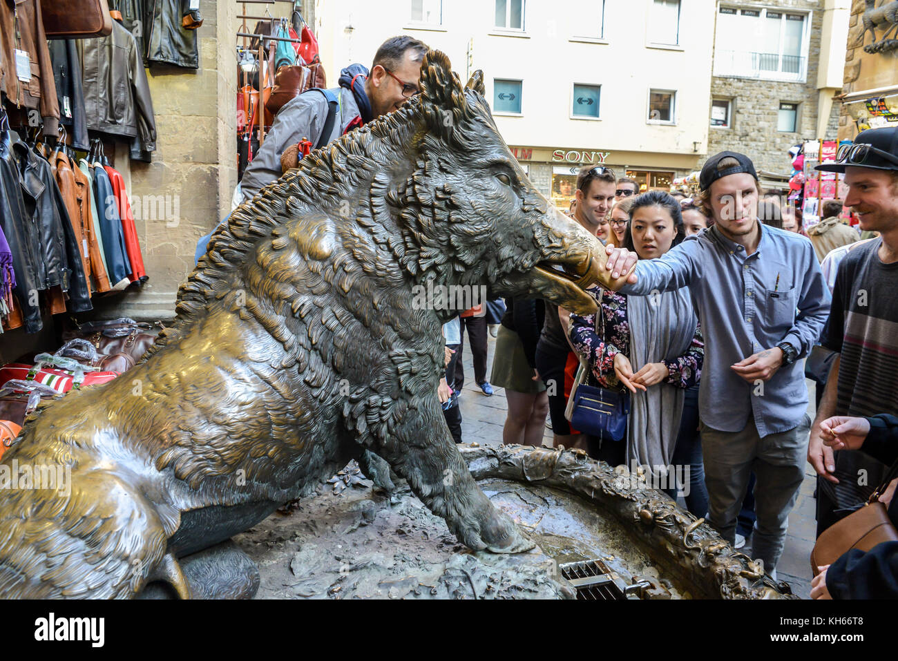 'Il Porcellino' wild boar statue at the Mercato Nuovo in Florence. Rub his snout for good luck and drop - Stock Image