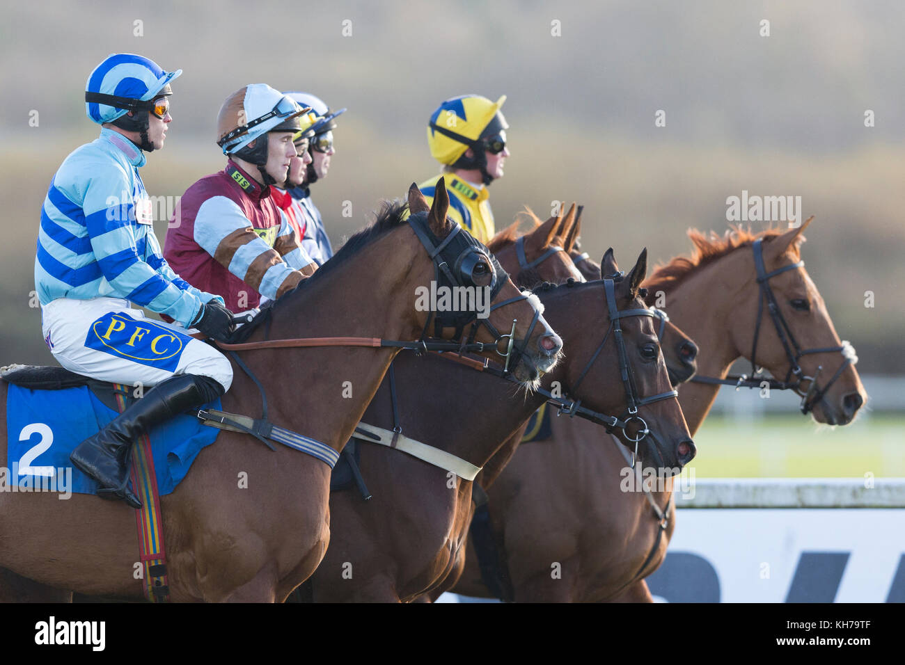 Jockeys and horses prepare to start a race at Ffos Las, Trimsaran, Carmarthenshire, Wales wearing bright, colourful - Stock Image