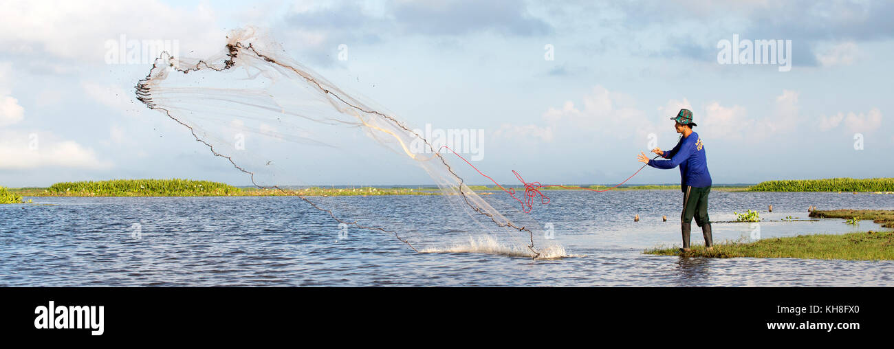 Thailand, Patthalung, Tale Noi, Fisherman with cast net *** Local Caption ***  asia,cast net fishing,lake,human Stock Photo
