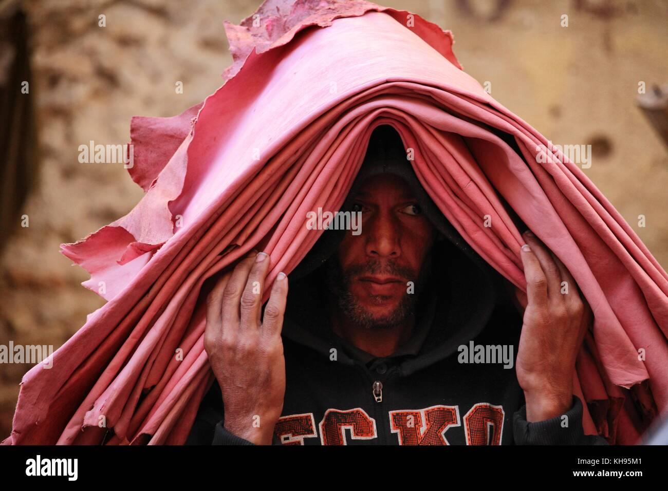 Fez, Morocco - November 8, 2017: Man holding freshly pink tanned animal skin at the Fez medina leather market - Stock Image