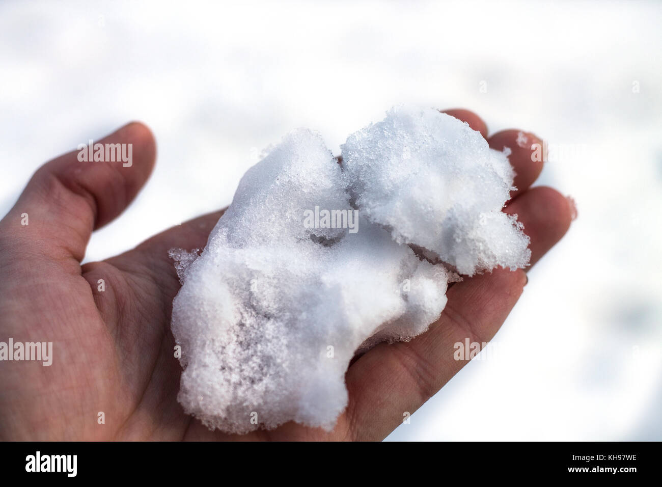 Man hand is holding snow. White background - Stock Image