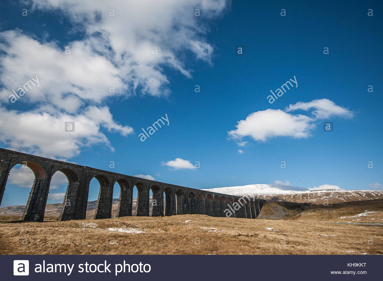 Ribblehead Viaduct near Ingleton Yorkshire - Stock Image