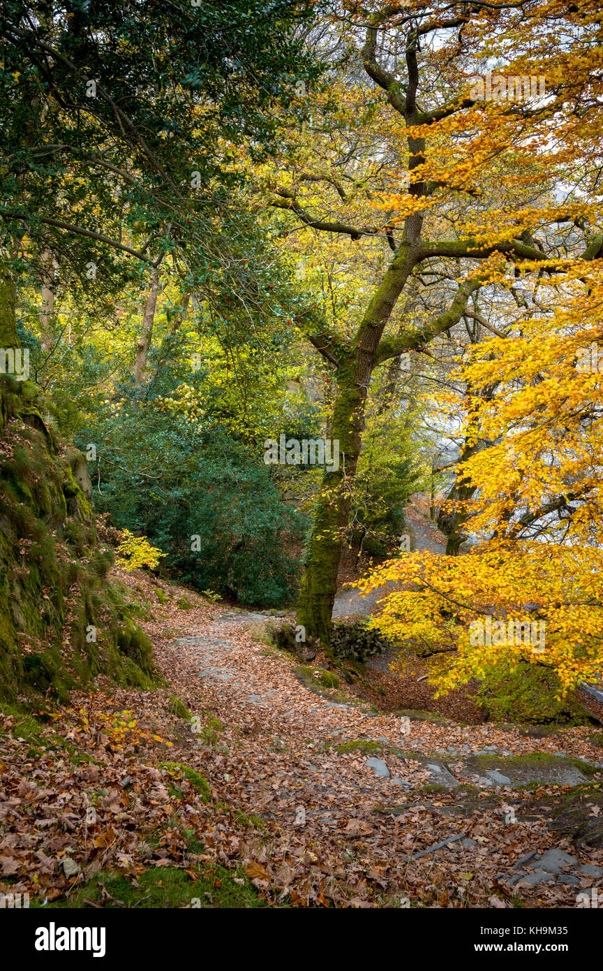 Autumn, Glenridding, Lake District, Cumbria, UK. - Stock Image