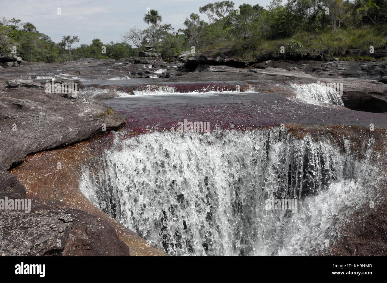 Rock-cut holes in Cano Cristales - Stock Image