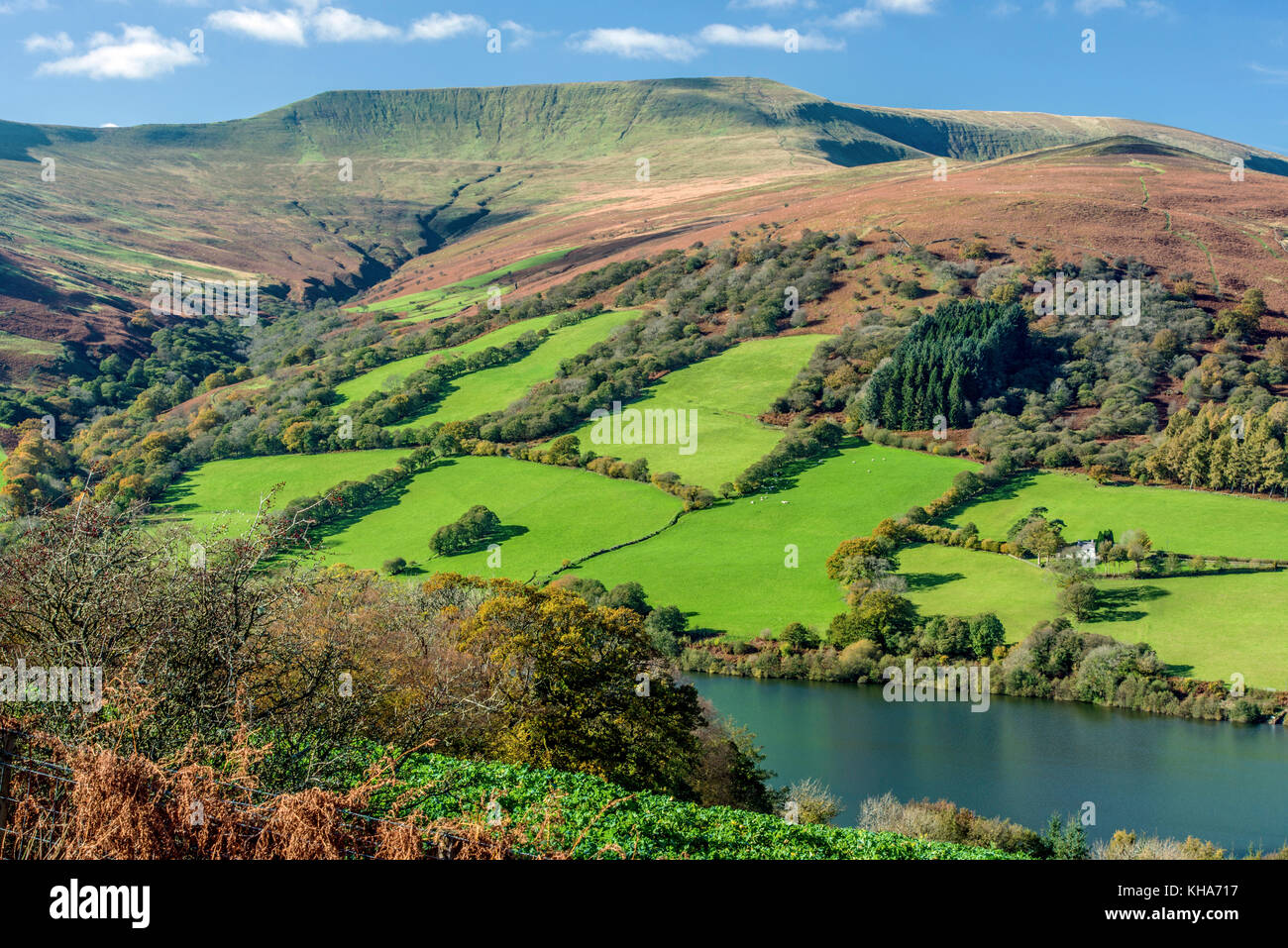 Looking across to the height of Waun Rydd Brecon Beacons south Wales on a bright sunny October day - Stock Image