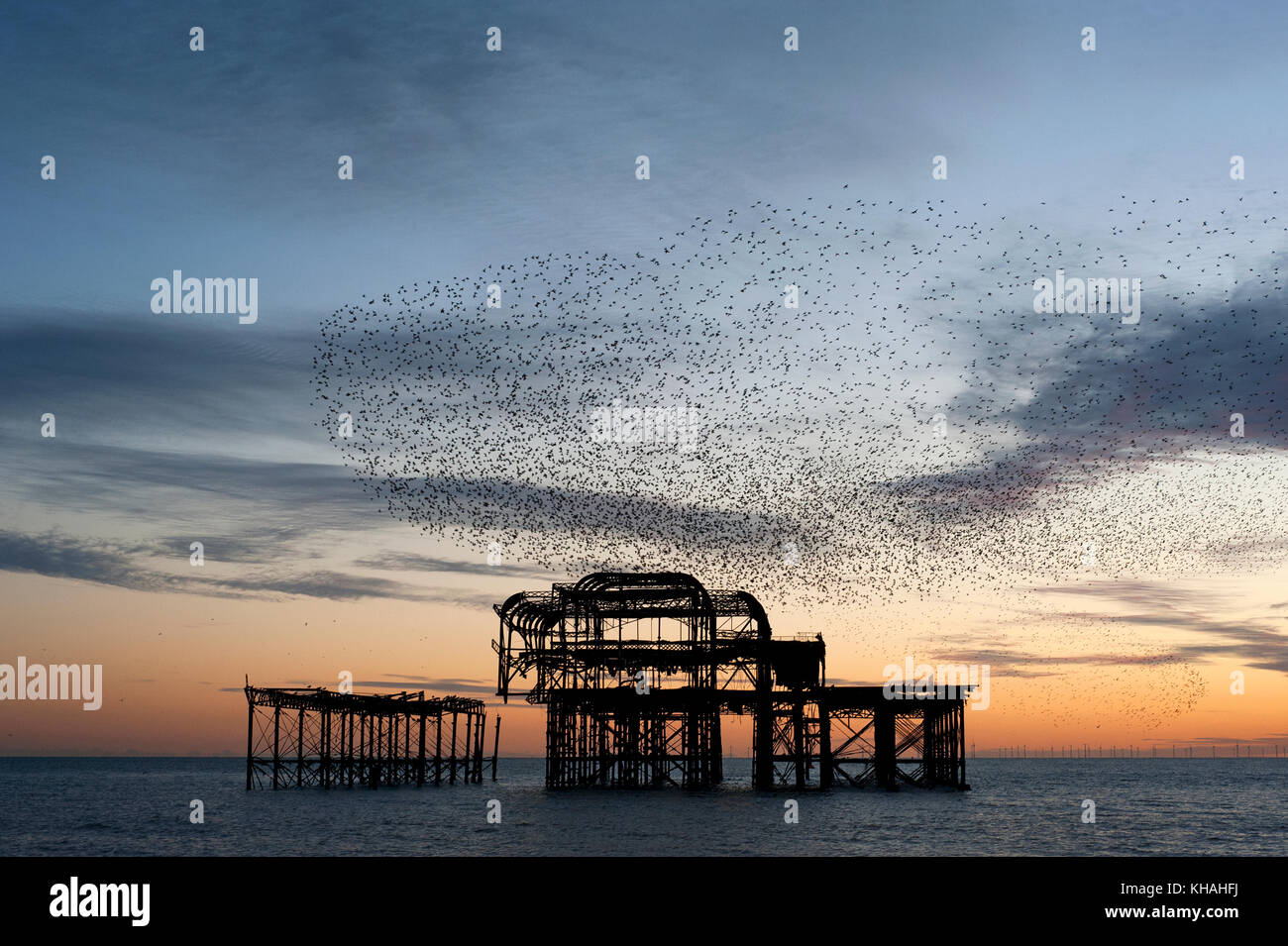 Murmuration over the ruins of Brighton's West Pier on the south coast of England. A flock starlings perform aerial acrobatics over the pier at dusk. Stock Photo