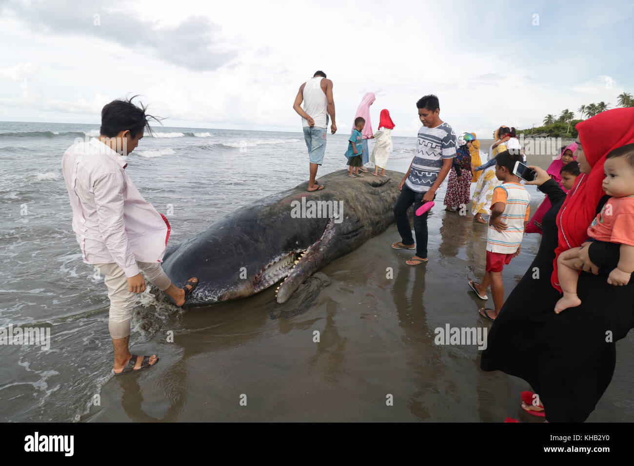 Beach public sperm — img 2