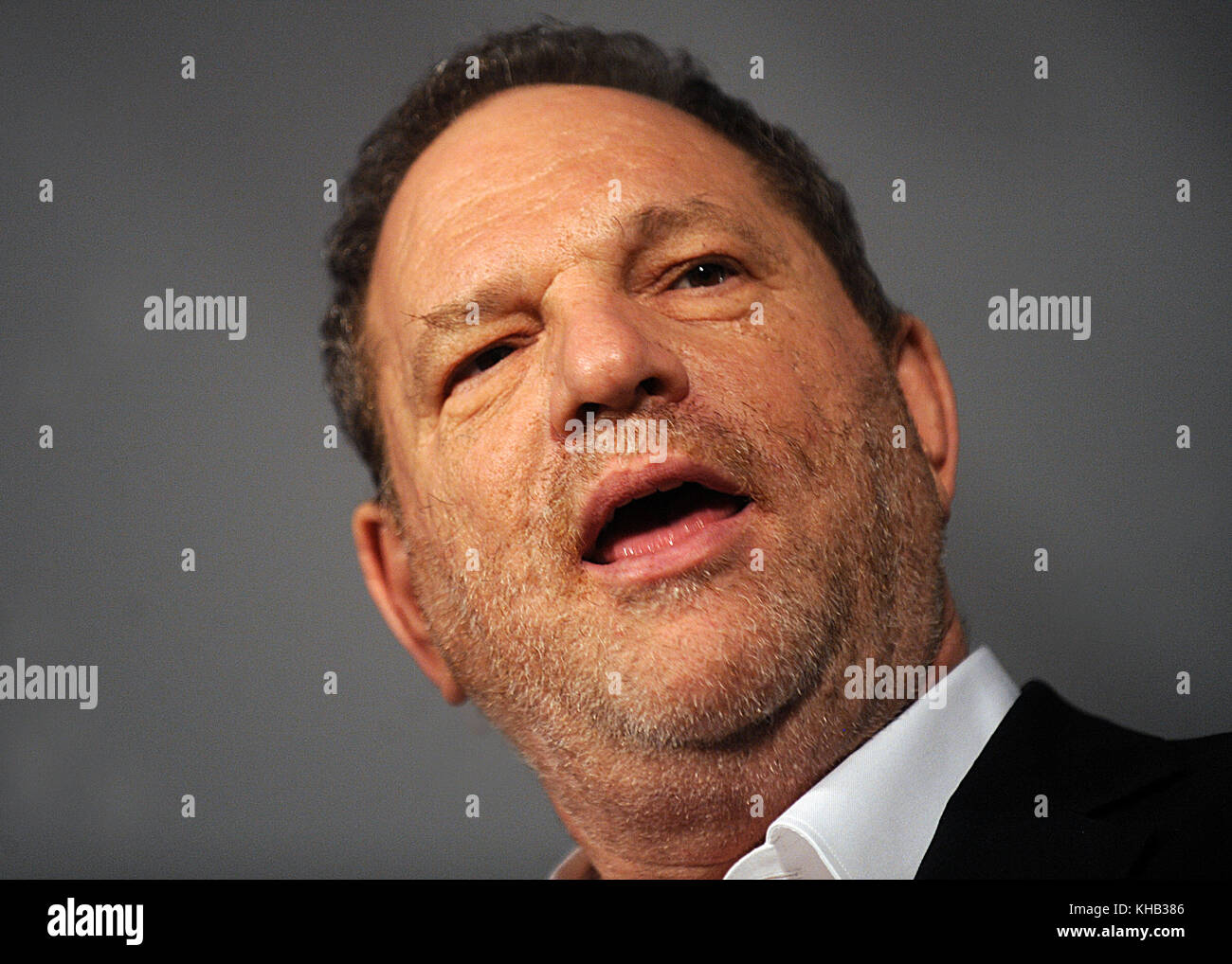 NEW YORK, NY - JUNE 10: Harvey Weinstein at the 8th Annual 'Made In NY Awards' at Gracie Mansion on June - Stock Image