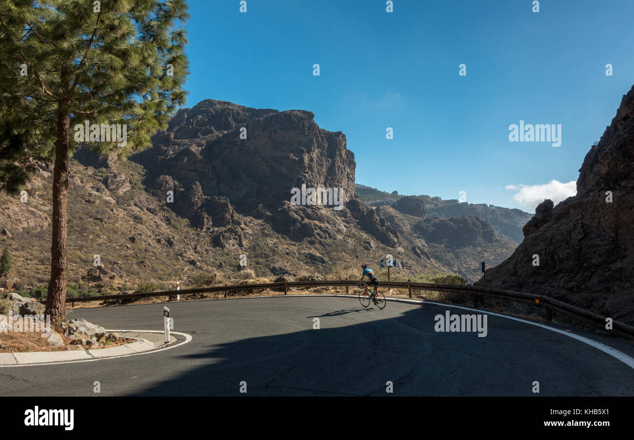 Cyclist cycling a hairpin bend on a road bike with mountain views inland descending to Ayacata on the GC-600 road, - Stock Image