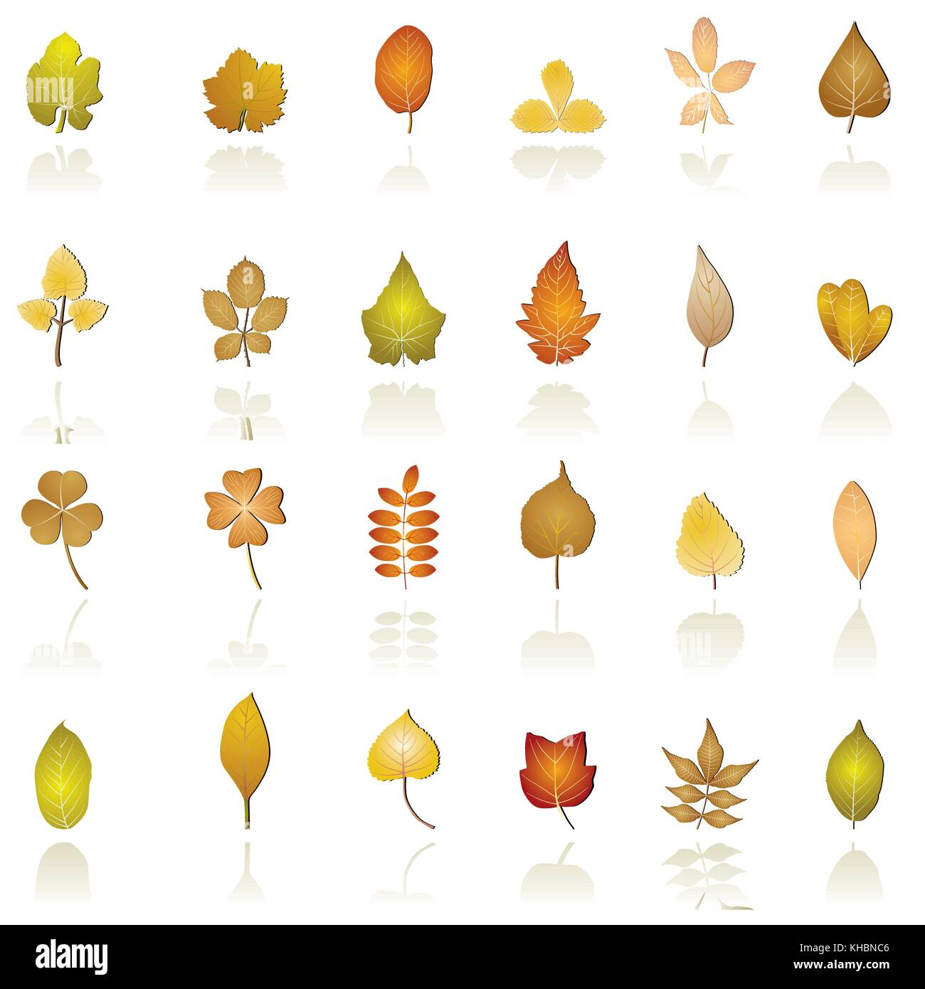 autumn leaf background and icons - vector icon set - Stock Vector