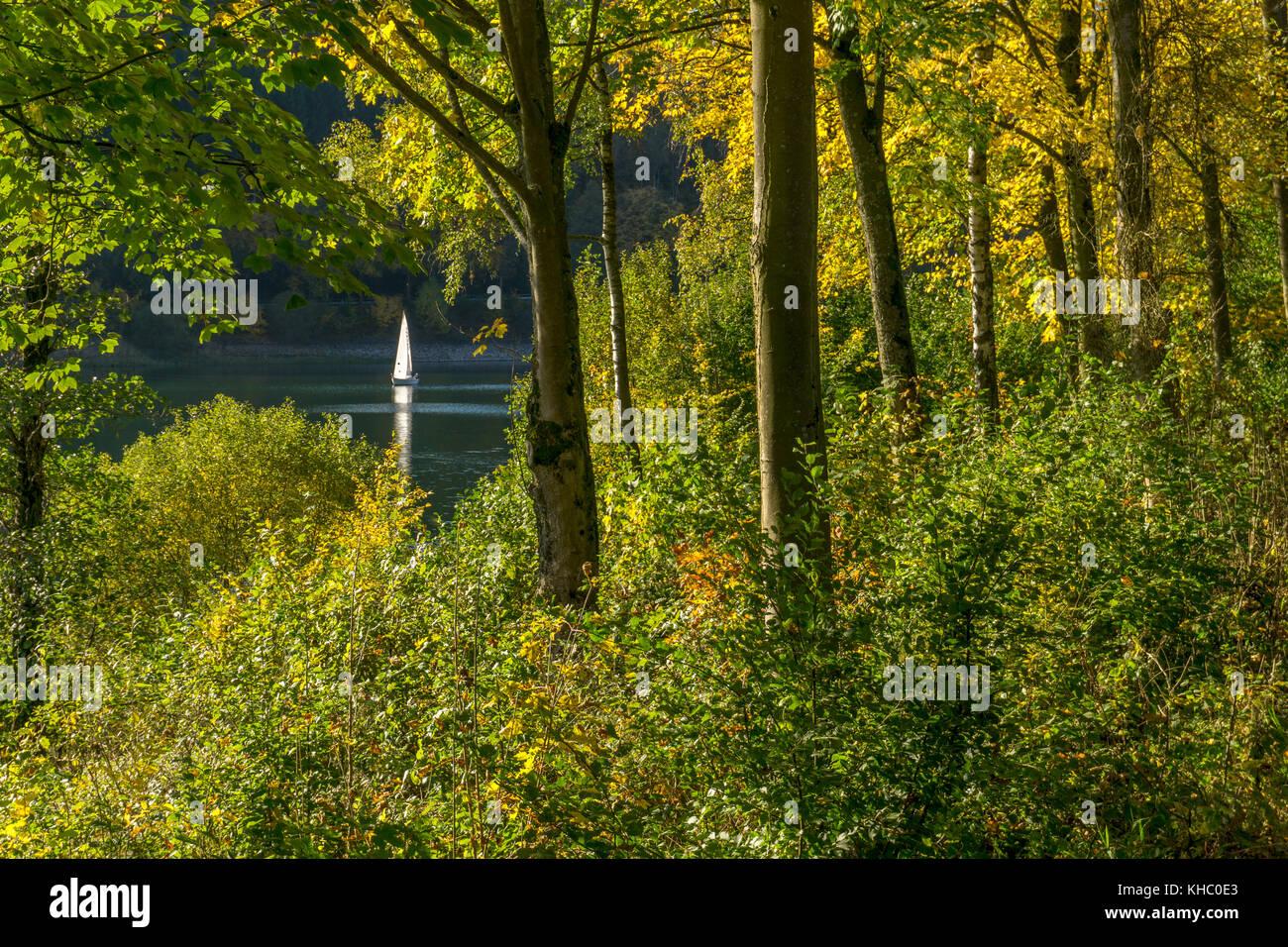 Segelboot auf dem Hennesee im Naturpark Sauerland-Rothaargebirge bei Meschede, Hochsauerlandkreis, Nordrhein-Westfalen, - Stock Image