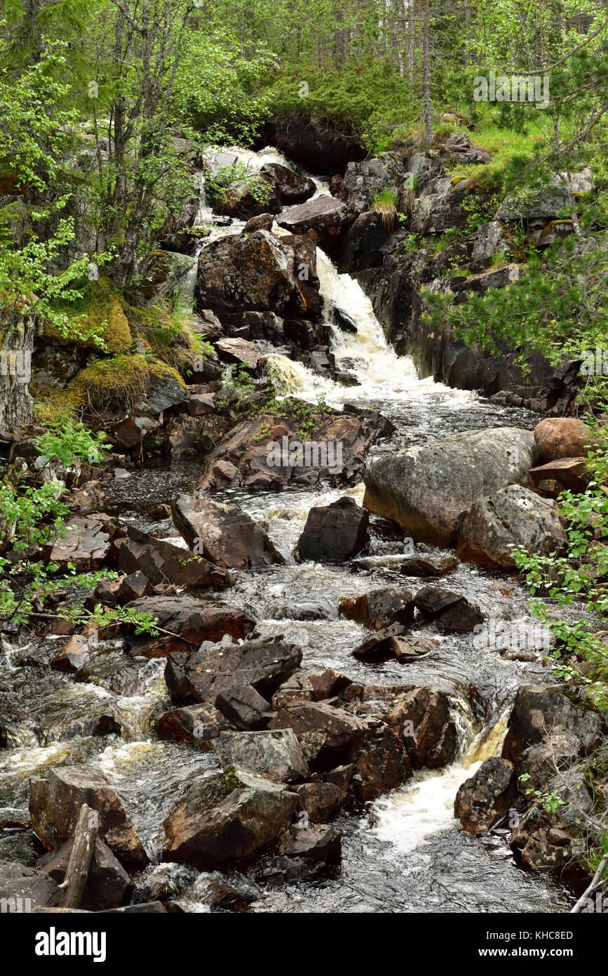 Stream, waterfall, bolders, forest, Särna, Heden-Särna kommun, Dalarna county, Sweden *** Local Caption - Stock Image