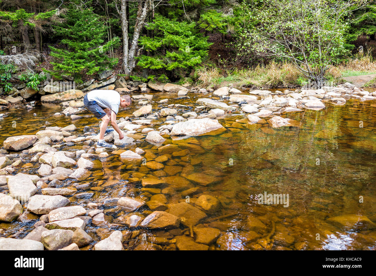 Young man enjoying nature on peaceful, calm Red Creek river in Dolly Sods, West Virginia during sunny day with reflection - Stock Image