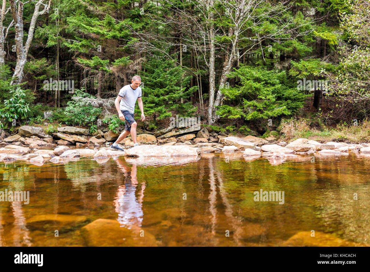 Young man crossing peaceful, calm Red Creek river in Dolly Sods, West Virginia during sunny day with reflection - Stock Image