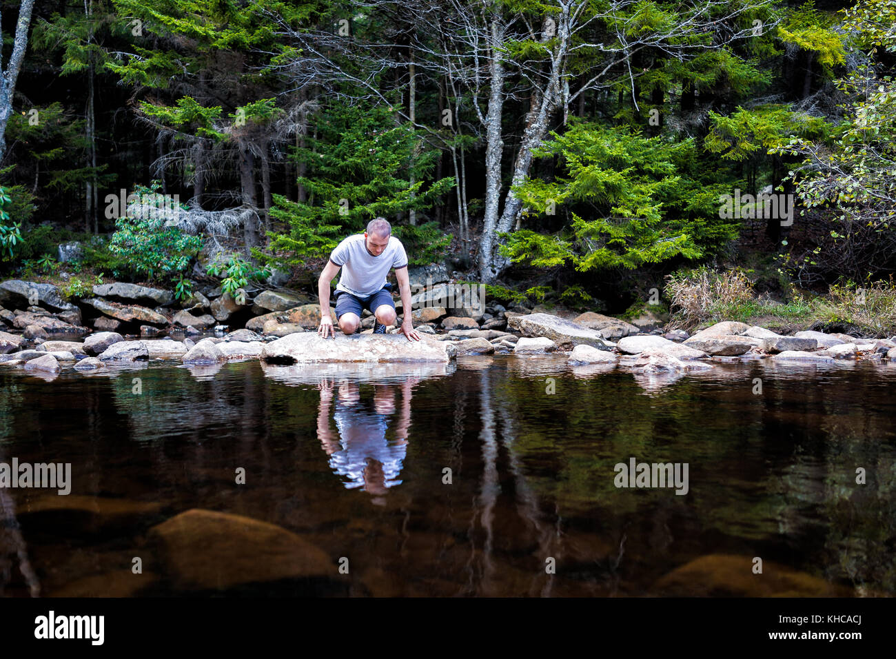 Young man looking into reflection of dark water on peaceful, calm Red Creek river in Dolly Sods, West Virginia - Stock Image
