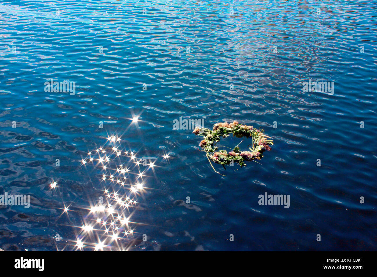 A Flower Crown Floating on Sparkling Water in the Heart of Summer in Sweden - Stock Image