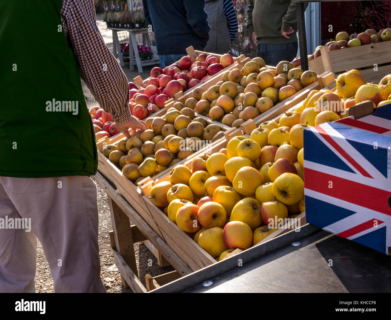 Buying browsing choosing English apples at an outdoor British Farmers Market stall UK - Stock Image