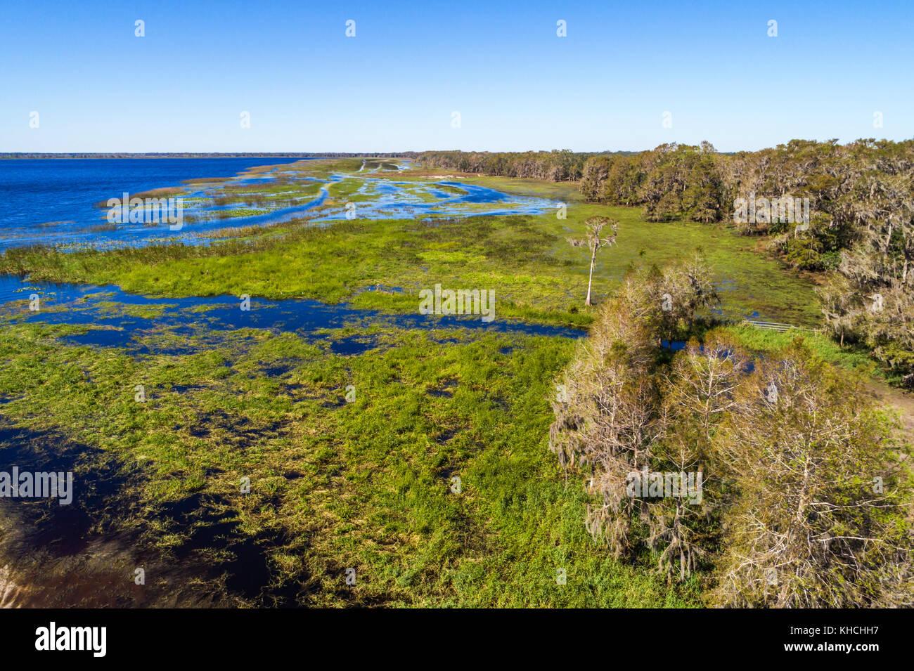 Florida Kenansville Cypress Lake water shore trees aerial overhead bird's eye view above - Stock Image