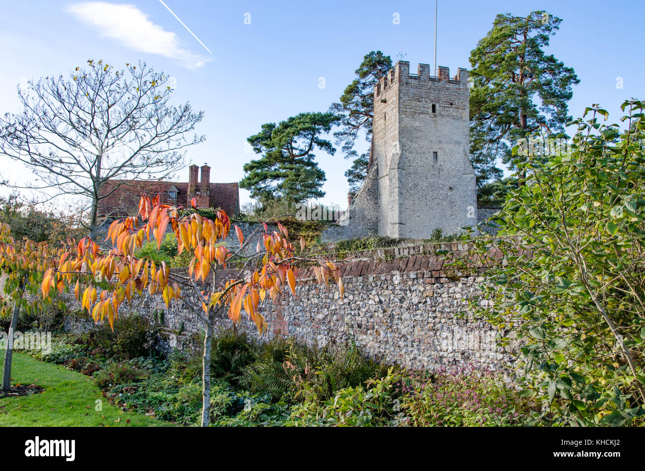 Church trees and a wall - Stock Image