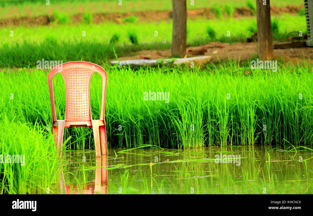 odd combination-resting chair in the middle of sowing field, useless for a farmer but perfect for a photographer - Stock Image