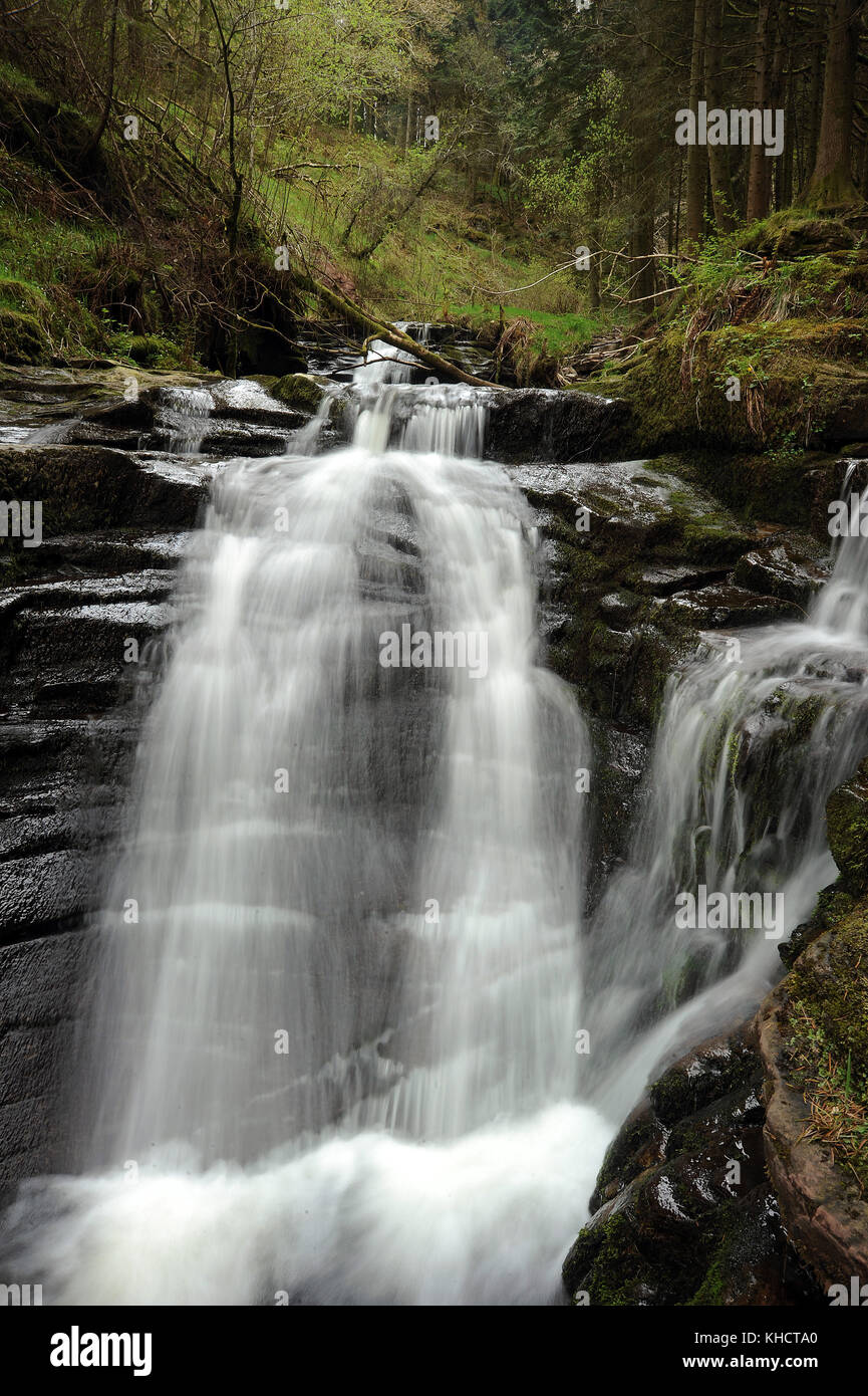 Small waterfall at the confluence of Nant Bwrefwr and its last tributary. - Stock Image