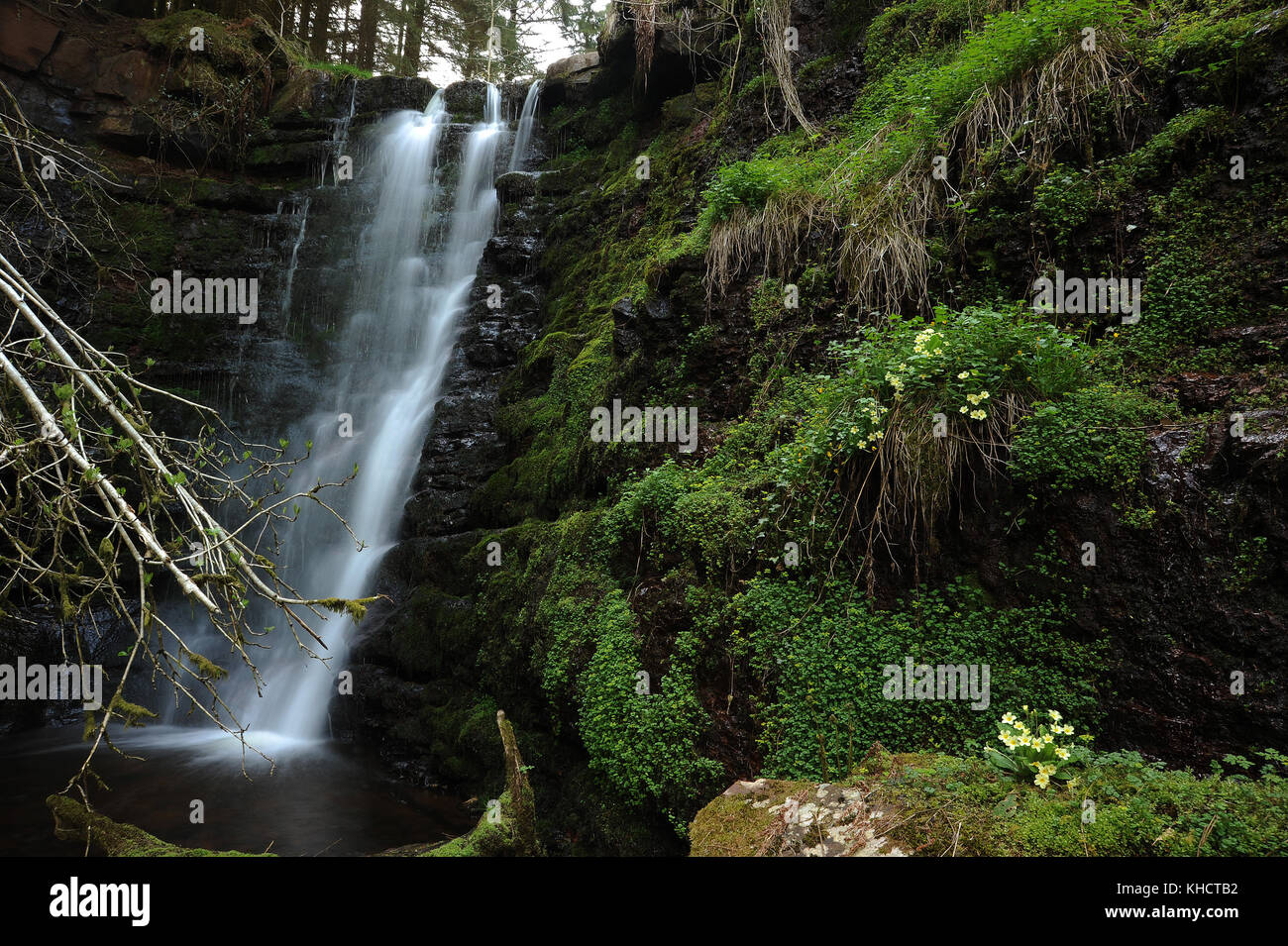 The third waterfall on the Nant Bwrefwr between the car park and the Afon Caerfanell. - Stock Image