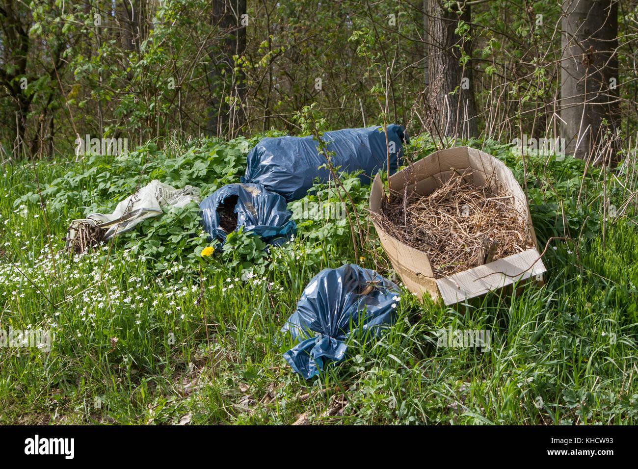illegale Müllentsorgung in der Natur Stock Photo