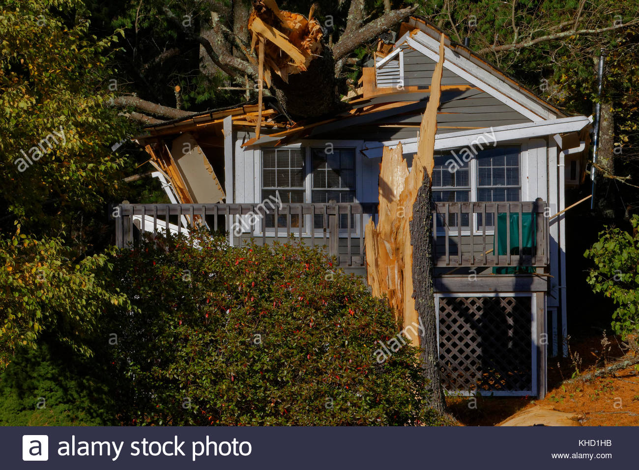 Sensational Small Cottage Damaged By A Falling Tree Lincolnville Maine Interior Design Ideas Jittwwsoteloinfo