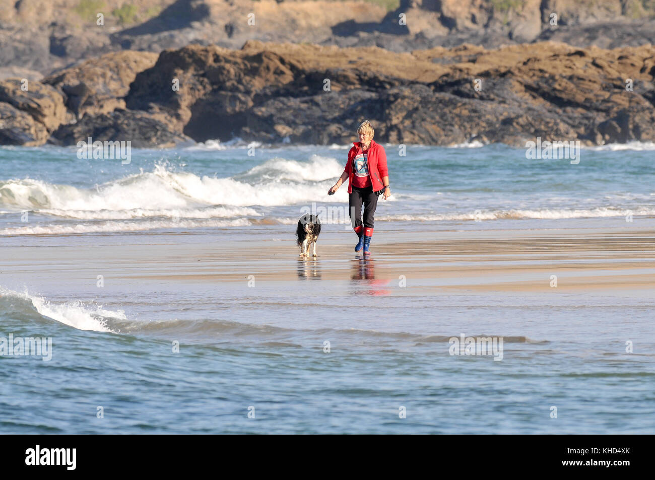 Lady walking her dog on the beach during a warm autumn day in Cornwall, England, UK - Stock Image