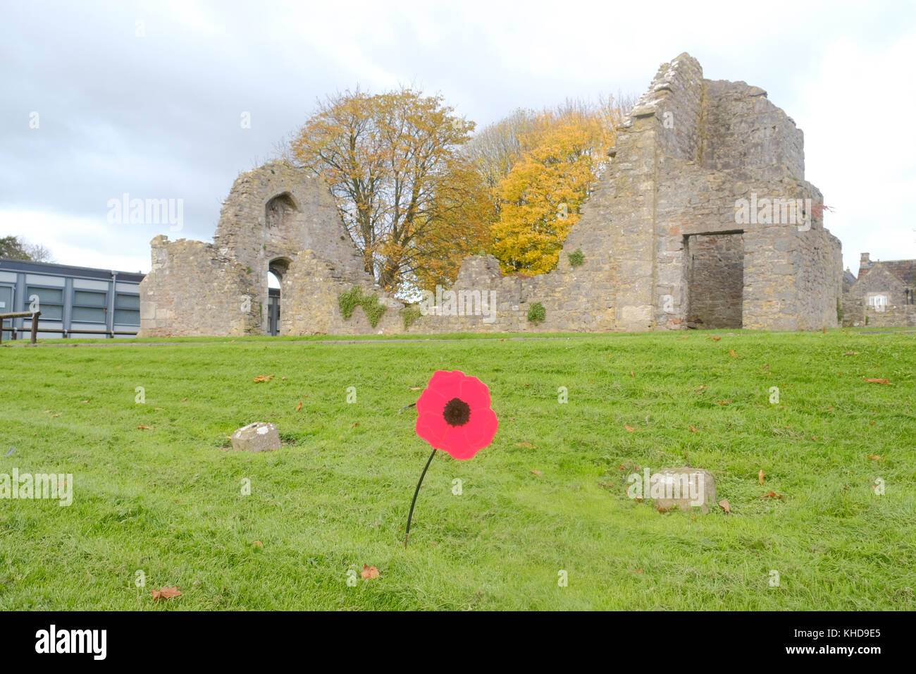 November  2017 - Lone red poppy in front of the ruins of the church of the Kings of Wessex, on Remembrance day 2017. - Stock Image