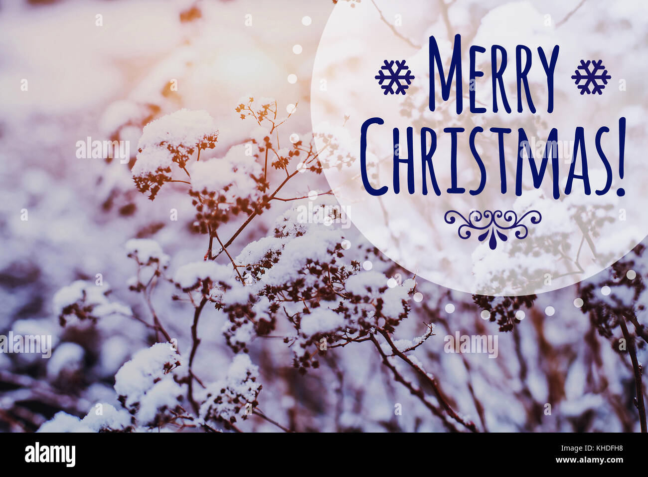 Merry Christmas greeting card on beautiful winter frozen landscape background with copy space - Stock Image