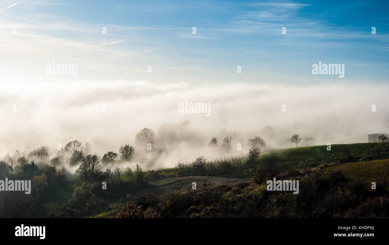 Fog across the trees in the hills of Oltrepò Pavese, in Italy Stock Photo