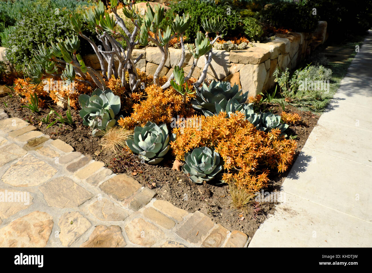 Southern California Garden Stock Photos & Southern California Garden ...