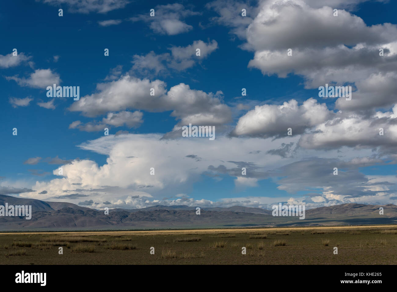 Scenic view of the steppe, mountains and sparse vegetation on the background of blue sky and clouds - Stock Image