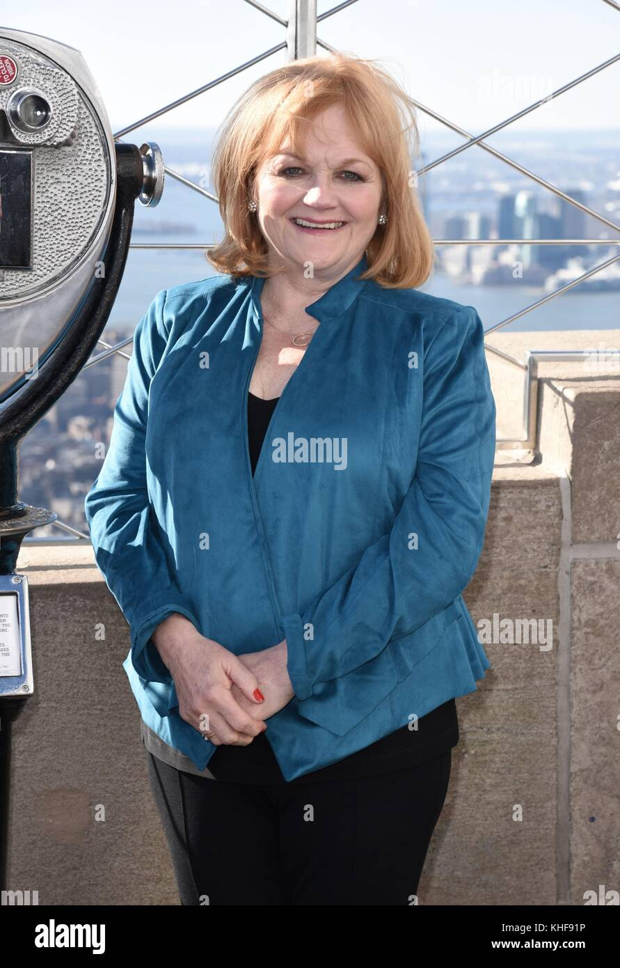 New York, NY, USA. 17th Nov, 2017. Lesley Nicol at a public appearance for DOWNTON ABBEY: The Exhibition Celebrated - Stock Image