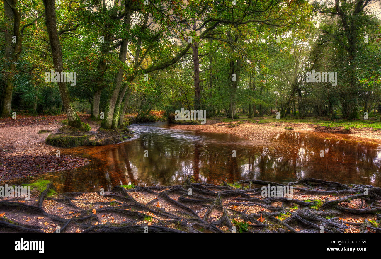 Landscape view of Ober Water, in the New Forest, Hampshire, UK. Stock Photo