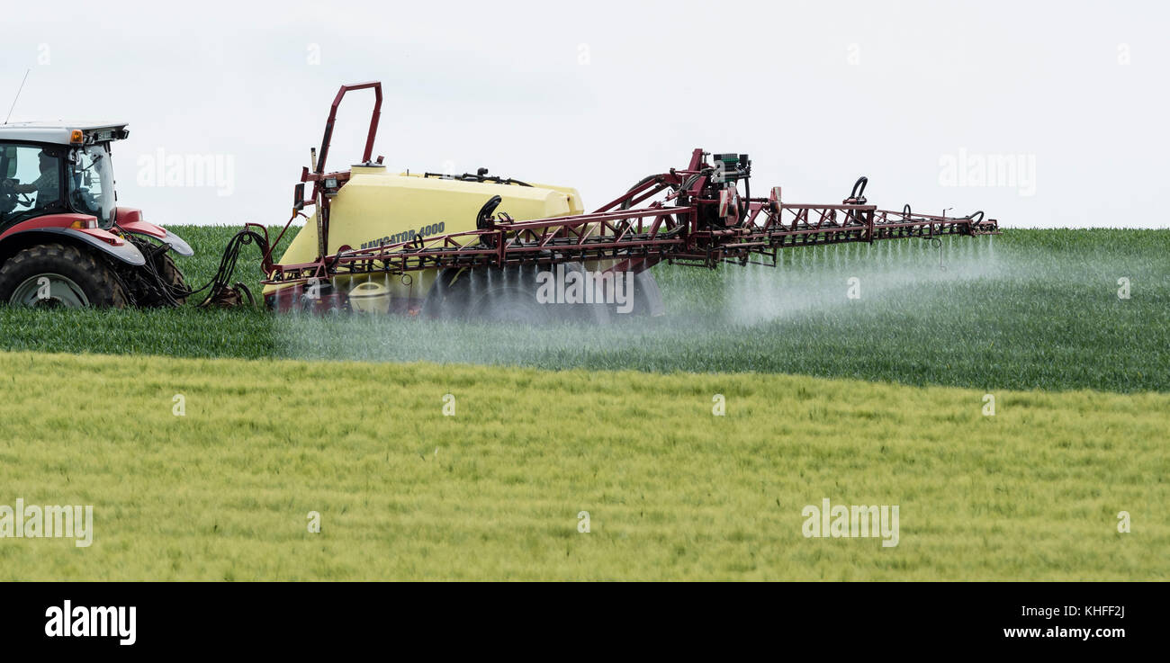 Farmer treating fields with chemistry, tractor, near Celle, Germany - Stock Image