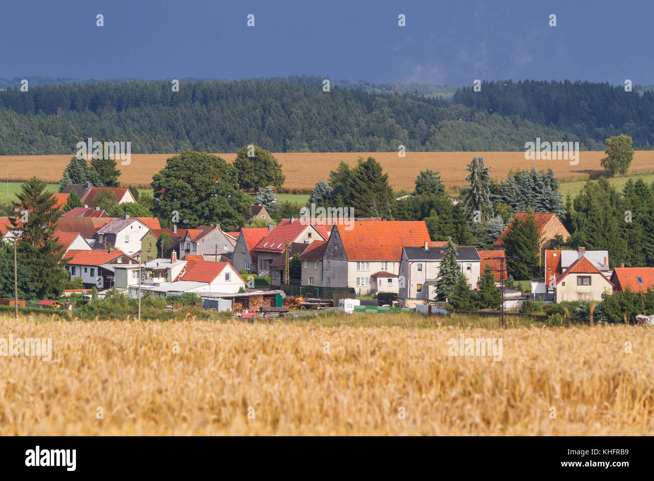 Blick auf Siptenfelde im harz - Stock Image